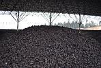 uhlí pod střechou
